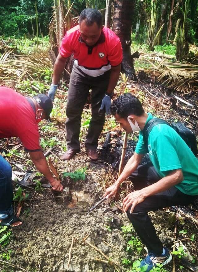 Kepala Desa Ohoiluk Norbertus Renyaan, bersama Sekcam Manyeuw Amrosius Letsoin dan Staf saat melakukan penanaman pohon di lokasi Agrowisata Buah Ohoi (Desa) Ohoiluk. Foto: Petter Letsoin
